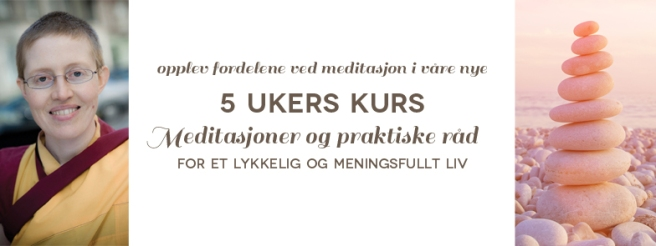 5ukerskurs